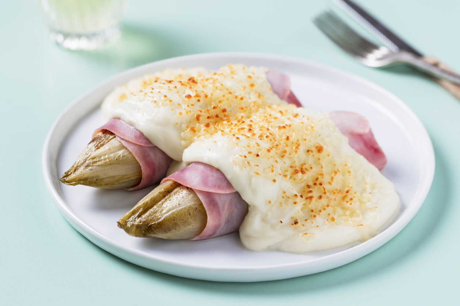 two chicory pieces rolled in ham and covered with bechamel sauce and grilled cheese on a white plate and blue background